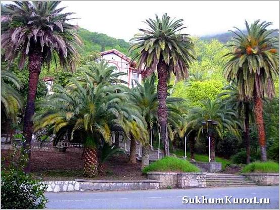 Туризм в Абхазии