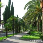 Самые интересные места при прогулках по улицам города Сухум.