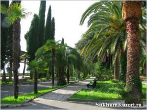 Самые интересные места при прогулках по городу Сухум