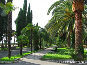 Улицы Сухума