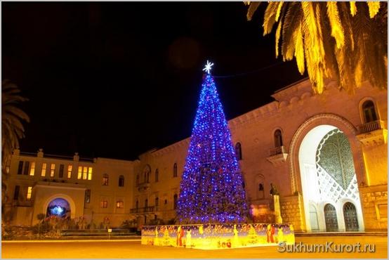 Новогодняя елка в Сухуме