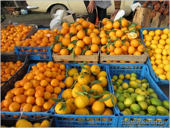 Зимой в Абхазии самые дешевые мандарины и апельсины