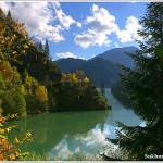 Отдых в Абхазии цены