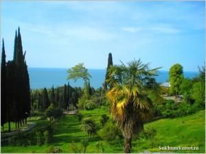 Абхазия отдых 2015 цены фото