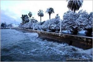 Сухум зимой